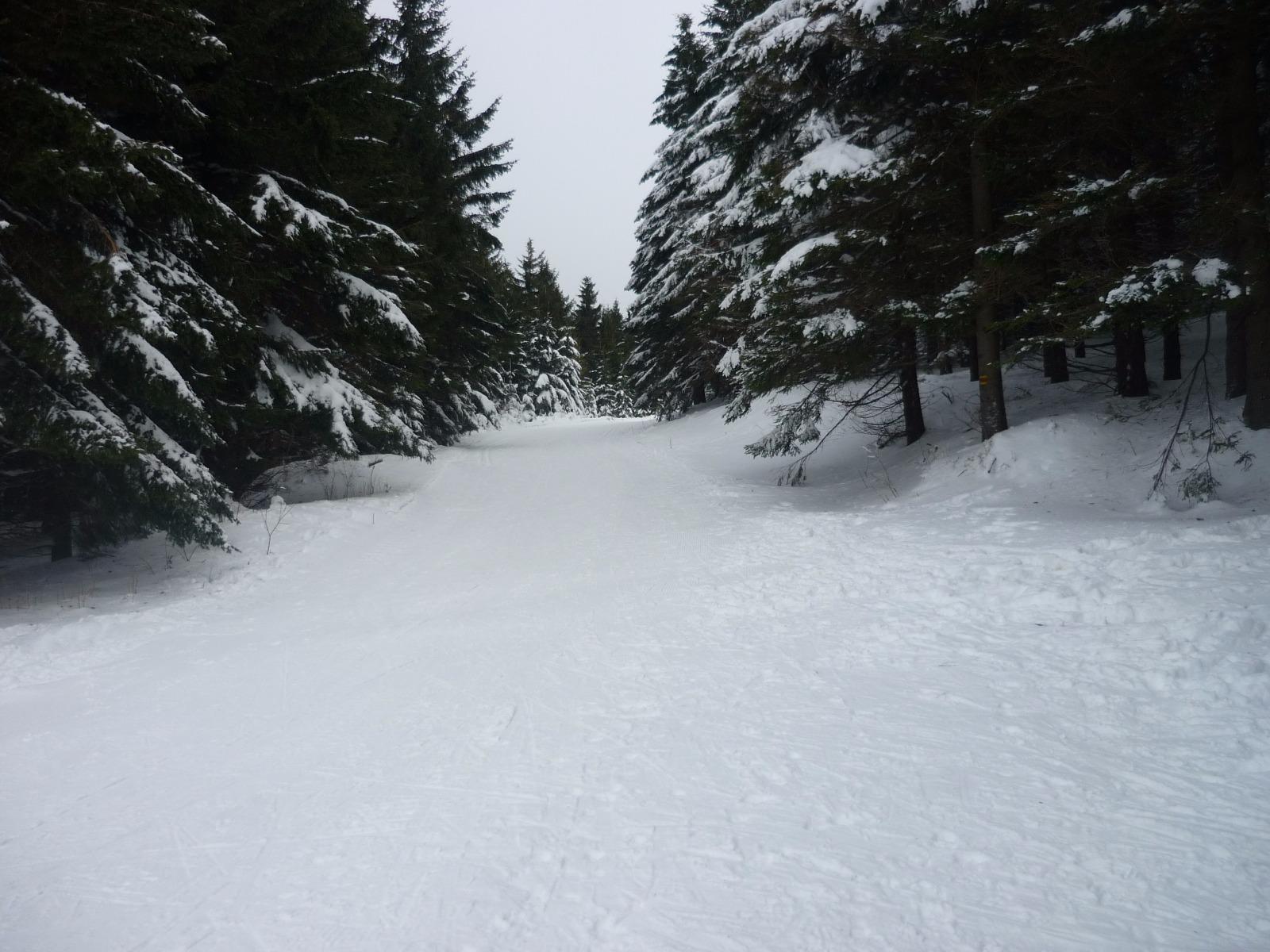 Skiareal Sindelna - Kouty nad Desnou (Winkelsdorf)
