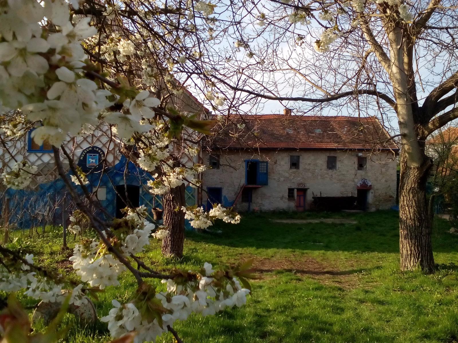 Art mlýn Bohuslavice