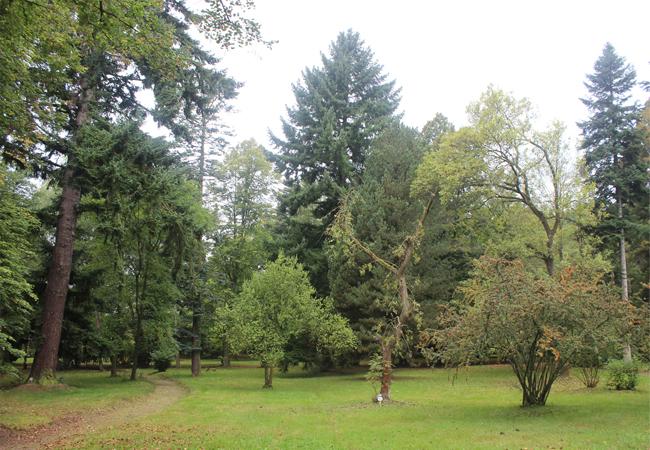 Arboretum Domažlice