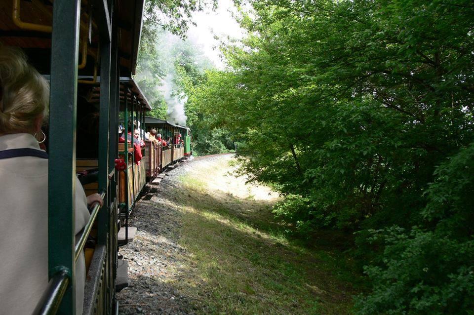 Koliner Rübenbahn