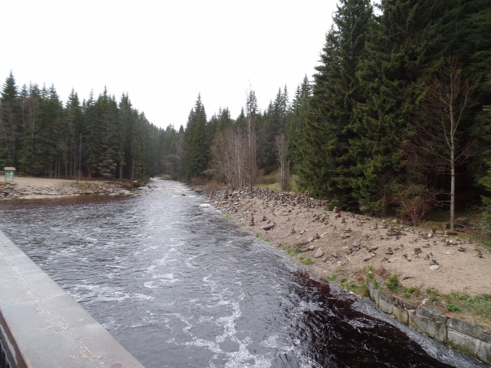 Chinitz-Tettauer Schwemmkanal