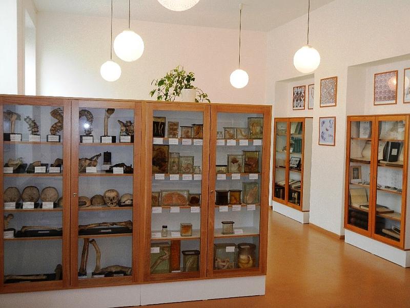 Muzeum patologie Opava